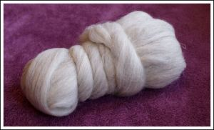 Swaledale light grey