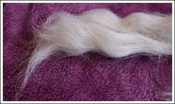 Swaledale light grey fibres
