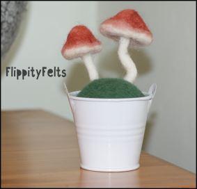 Two wild mushrooms