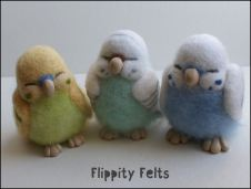The budgie collective