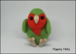 Little Lovebird