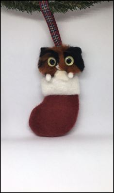 felted long haired tortie