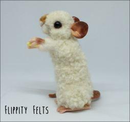 Dumbo Himalayan Rex Fancy Rat