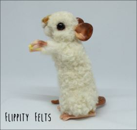 Dumbo Himalayan Rex Fancy Rat