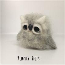 Fuzzy grey owlet